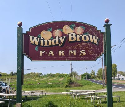 Windy Brow Farms
